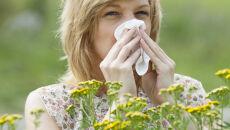 Alergików czeka prawdziwy armagedon. Przez przedłużającą się zimę