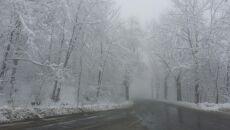 Wiosenny atak zimy na Dolnym Śląsku