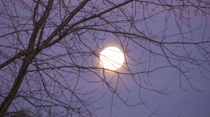 Na niebie wzejdzie mini-Księżyc. <br />Czeka nas ciekawa pełnia