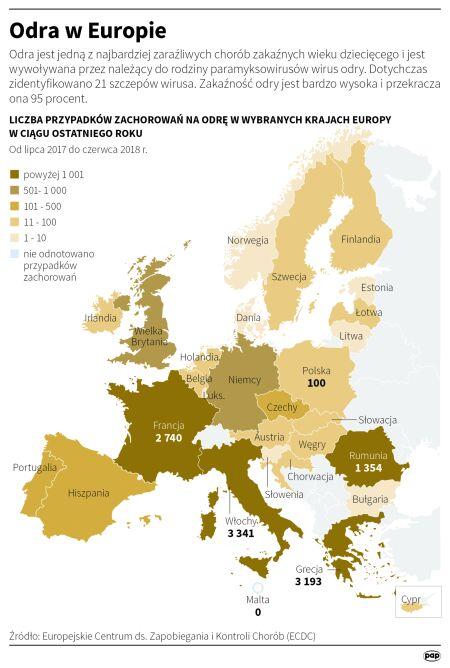 Liczba przypadków zachorowań do czerwca 2018 roku (PAP/Małgorzata Latos)